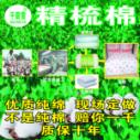 新疆精梳棉批发图片