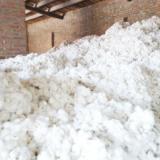 供应哪里有棉絮卖,哪里有棉絮卖,棉絮多少钱一斤