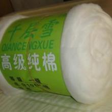 供应棉洋子市场价格,河北棉洋子市场价格