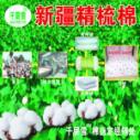 千层雪新疆精梳棉图片