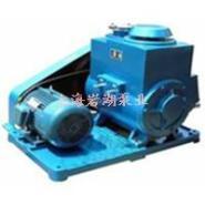 2X型旋片真空泵产品概括及选型图片