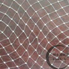 供应单丝网尼龙单丝网塑料单丝网批发透明单丝网单丝渔网厂家