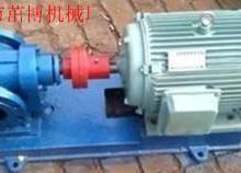 供应聚醚多元醇输出计量泵聚氨酯齿轮泵合金钢杂质泵JMB2.1-30批发