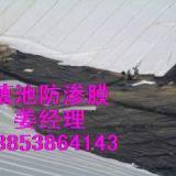 供应HDPE土工膜广西垃圾填埋场防渗膜厂