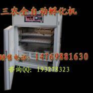贵州鸭蛋孵化机贵阳小鸭孵化器图片