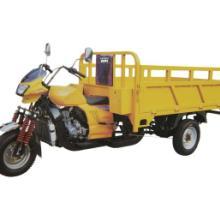 供应 建设大黄蜂  三轮摩托车 正三轮摩托车 三轮摩托车图片