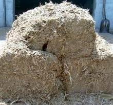 供应麦秆草料