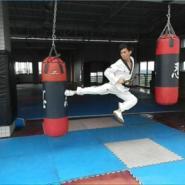 韩流跆拳道馆图片