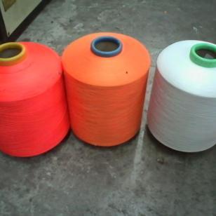 涤纶丝100D/150D/300D图片