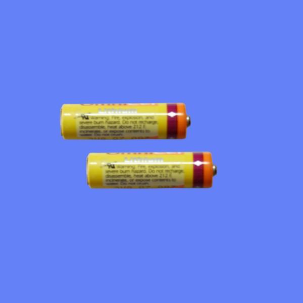 供应多米诺喷码机主板电池优质厂家 A系列主板电池 多米诺A系列