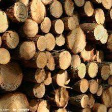 供应印尼木材/半成品家具进口东莞代理批发