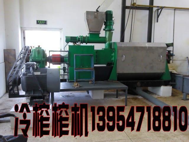 供应日产20吨腰果壳冷榨机