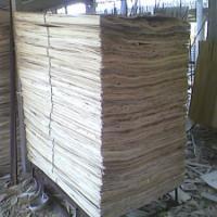 丰县木皮联盟大量供应杨木皮 杨木单板木皮板皮