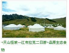 去新疆旅游什么方式最好,新疆海外国际旅行社,国家特许出境游组团社