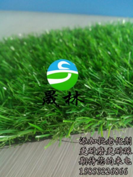 人造草皮造价 人造草皮造价供货商 人造草皮的价格 人造草高清图片