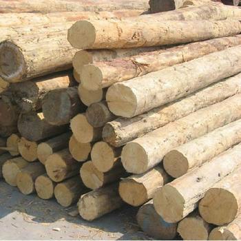 供应木材进口报关代理图片