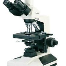 BM-2000生物显微镜实验室显微镜生物显微镜实验室