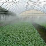 供应折射式微喷头/节约水/雾化喷淋/自动喷淋/水喷淋/喷淋嘴 草坪灌溉喷头