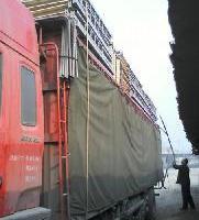 供应栾川铁质双层床,栾川铁质双层床制造商,栾川铁质双层床价格 图片 效果图