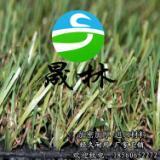 供应宠物垫人造草坪