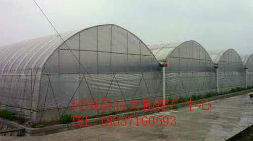 塑料大棚骨架价格_塑料大棚骨架塑料大棚的建造方法玻璃温室的
