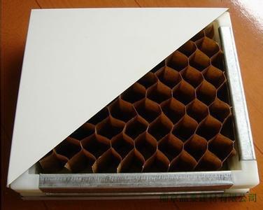 供应纸蜂窝净化板热卖,纸蜂窝净化板零售价,纸蜂窝净化板公司