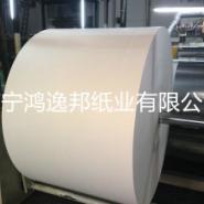 广西甘蔗浆淋膜纸厂家图片