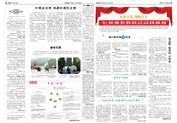 供应郑州报纸排版
