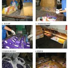 供应废料销毁服装销毁设备销毁图片