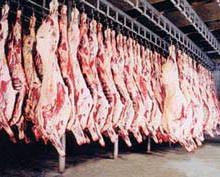 供应山西羊肉厂家怀仁羔羊肉哪家好怀仁羔羊肉养殖