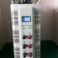 TDGC2/TSGC2接触式调压器图片