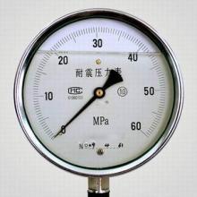 供应耐硫压力表
