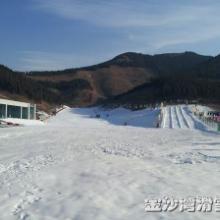 山东受欢迎的滑雪场【推荐】星级服滑雪场黍