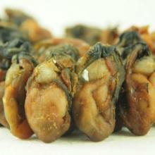 供应海蛎干牡蛎干海蛎子海蛎干批发 粮油 干货 干制水产品批发