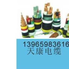 供应NH-BPYJVP2PR特种耐火变频电缆批发