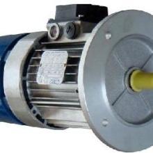 意大利进口刹车电机/标准电机图片