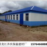黑龙江猪舍建设图片