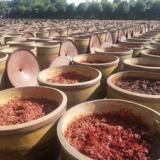 供应专用土豆粉料/专业供应专用土豆粉料