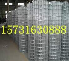 供应铁丝网,钢结构专用铁丝网