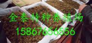 浙江林虿生物科技有限公司