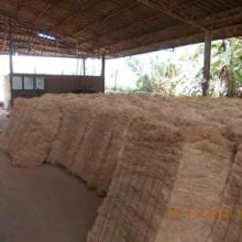 直销批发椰棕丝(适用于生产高档椰棕床垫)