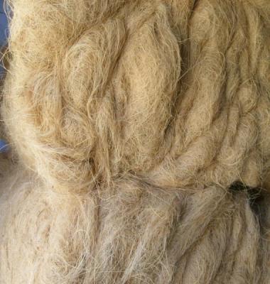 椰棕丝供应商图片/椰棕丝供应商样板图 (3)