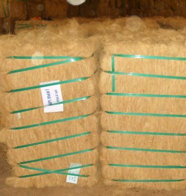 椰棕丝图片/椰棕丝样板图 (3)