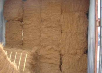 高档椰棕床垫图片