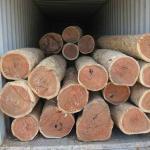 欧洲木材进口清关代理报价