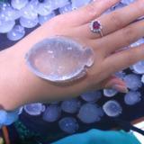 供应可爱小鱼乳白晶雕件天然乳白晶挂件