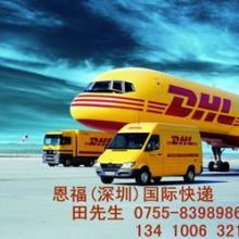 南山国际快递公司 南山DHL国际文件快递 南山DHL国际包裹寄件图片