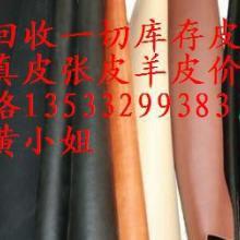 供应全国回收库存皮价格收购皮革废料皮牛羊皮头层皮图片