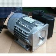 低价供应YL双值电容单相异步电动机图片