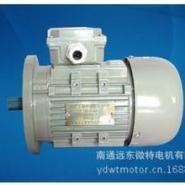 YS7124三相异步电动机图片